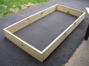 Raised Bed #2