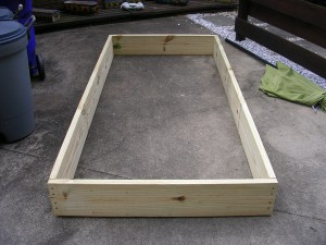 Raised Bed #3