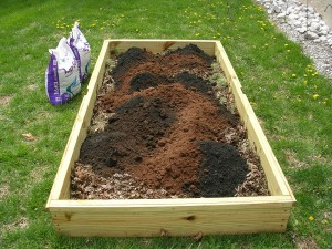 Raised Bed #9