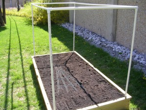 Raised Bed #13